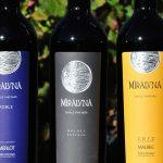 Miraluna Winery Cachi Salta Argentina
